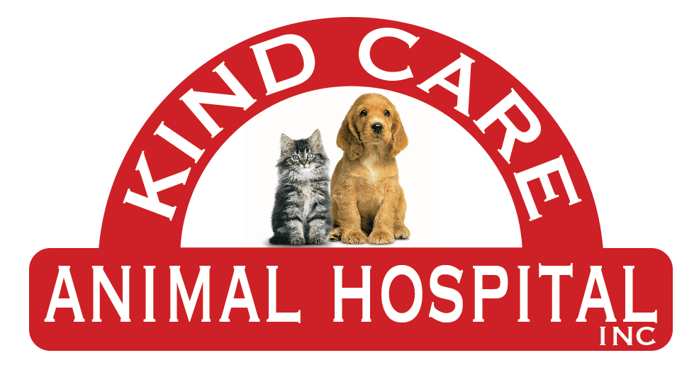 Kind Care Animal Hospital